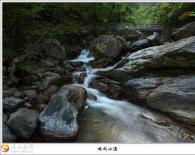 [岳西风光] 林间小溪