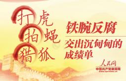 """【图解】""""打虎拍蝇猎狐"""":铁腕反腐交出沉甸甸的成"""