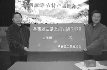 新科岳西翠兰茶王拍卖出天价拍卖款全部捐给青海玉树灾区