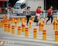 百米路装2百个隔离柱 密密麻麻看花眼