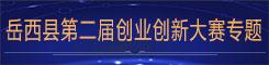 岳西县第二届创新创业大赛