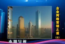万建峰:企业网络营销之道(三)