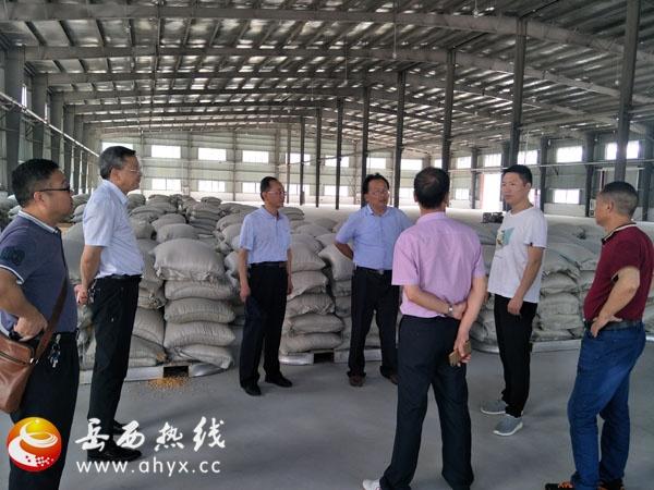 安庆市GDP_安徽安庆公布前年GDP修正数据:比初核数增加279.2亿