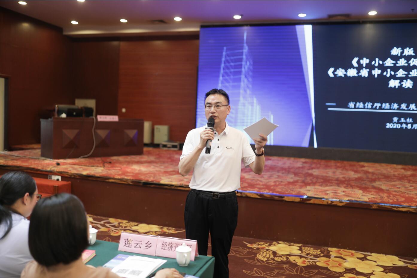 岳西县举办经信法治宣传月活动