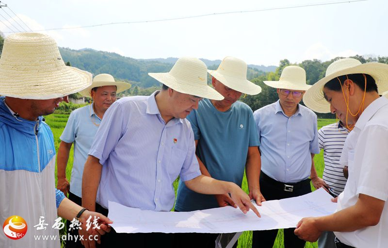 周东明调度六安至安庆铁路岳西段项目推进工作