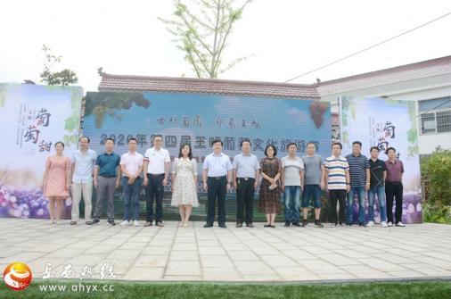 2020年第四届王畈葡萄文化旅游节开幕